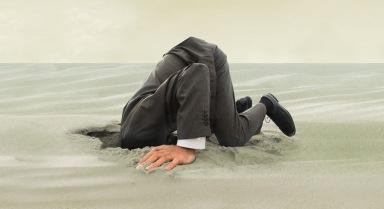 ZJL-Head-In-Sand