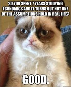grumpy-economics-cat