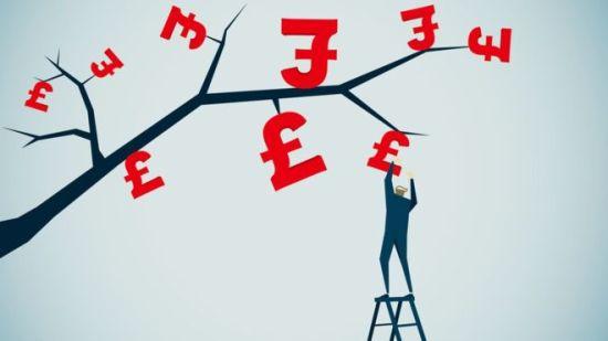 shake the money tree