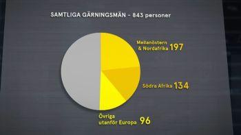 grafik3-jpg