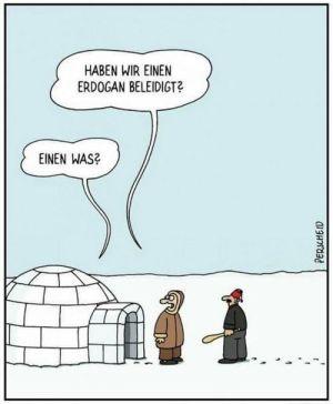 47796-erdogan-beleidigen