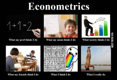 The pitfalls of econometrics | LARS P. SYLL